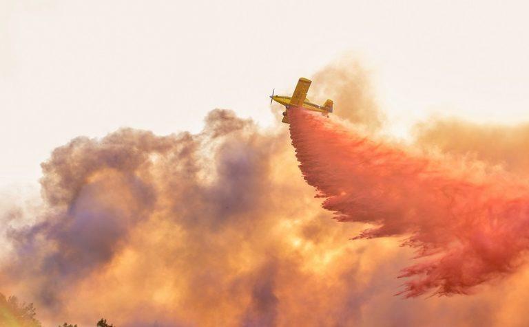 שריפה בחיפה. צילום יאסר שואהנה